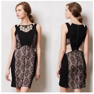 Maeve Black and Nude Lace Mix Print Cocktail Dress